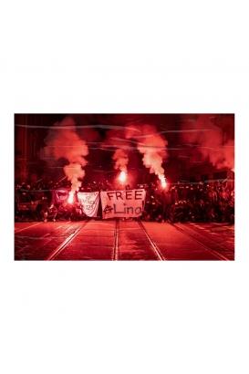 "Poster ""Free Lina"" - A3"